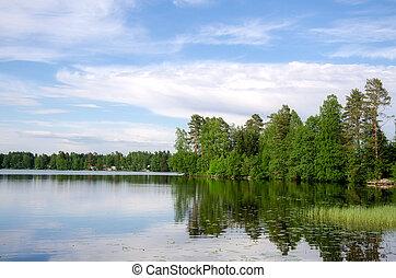 lago, shore.