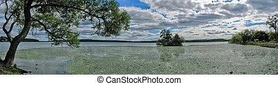lago, (sweden), sigtuna, bosques