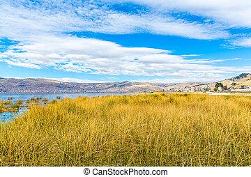 lago titicaca, américa, localizado, ligado, borda, de, peru,...