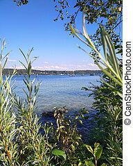 lago, verão