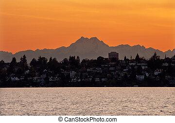 lago washington, monte, olympus, seattle, pôr do sol, de, kirkland, washington, noroeste pacífico, closeup, sempre-viva