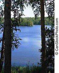 lago, y, árboles
