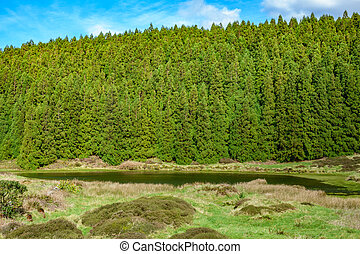 Lagoa do Negro (Black Lagoon) and forest in Terceira Island, Azores, Portugal