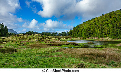 Lagoa do Negro (Black Lagoon) in Terceira Island, Azores, Portugal