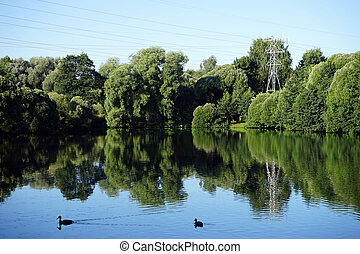 lagoa, parque