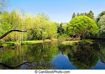 lagoa, parque, paisagem