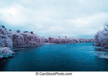 lagoa, parque, prado, infravermelho
