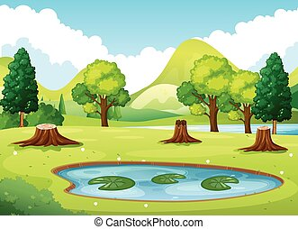 lagoa, pequeno, floresta, cena