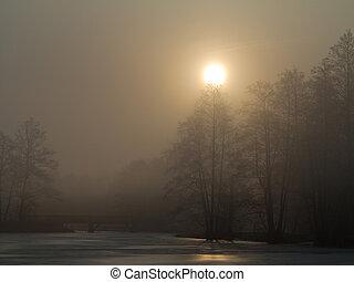 lagoa, sobre, calmo, manhã, nebuloso