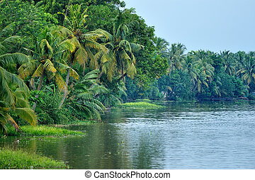 Lagoon in India