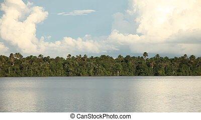 Lagoon, Rainforest, Peru