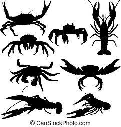 lagostim, e, carangueijo