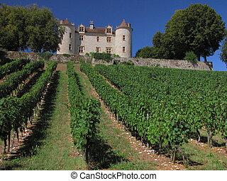 Lagrezette Castle, vigne, vineyard