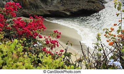 Laguna Beach Surf - Waves crash on to Laguna Beach in...