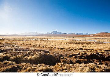 laguna, chileno, chile, paisaje