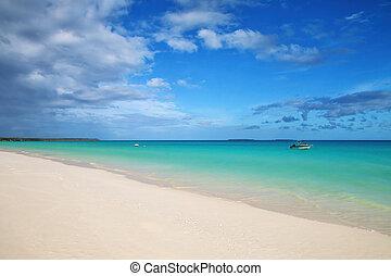 laguna, costa, islas, playa, lealtad, caledonia, fayaoue, ...