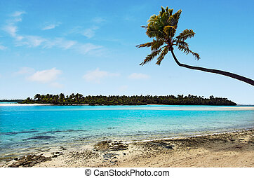 lagune, fod, koge, ø, æn, landskab, øer, aitutaki