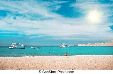 lagune, mit, jachten, und, sandstrand