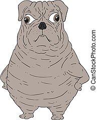 laid, rigolote, dessiner, chien