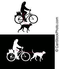 laisse, vélo, chiens, femmes