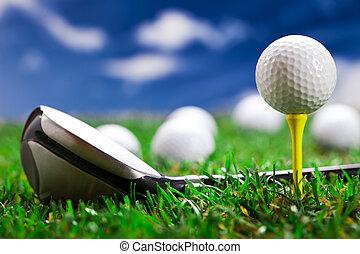 laissons, jeu, golf!, rond