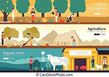 lakás, berendezés, külső, szerves, háló, tanya, megművelés, ...