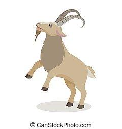 lakás, különböző, mód, goat, beállít, karikatúra