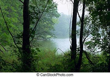 Lake Alimagnet Park Morning