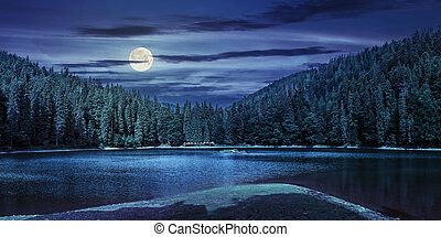 lake among the forest in mountains at night - landscape near...