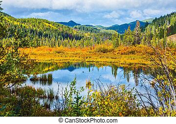 Lake among yellow bushes and far mountains