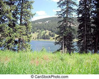 Lake amongst trees and Mountains