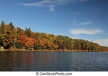 Lake and autumn trees reflecting on calm water