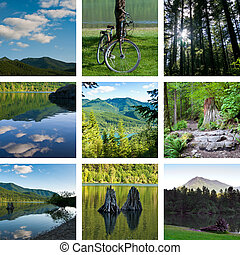 Lake and forest hiking trail collage with nine photos,...