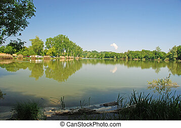 Lake and forest landscape