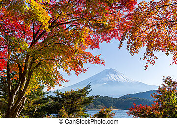 Lake and Fujisan in autumn