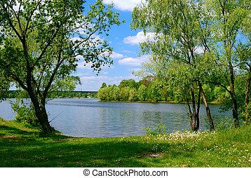 lake and green trees