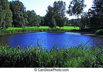 Lake at sunny summer day and trees