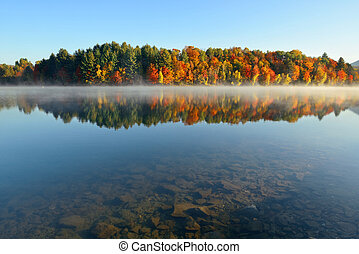 Lake Autumn Foliage fog