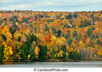 Lake Autumn Foliage