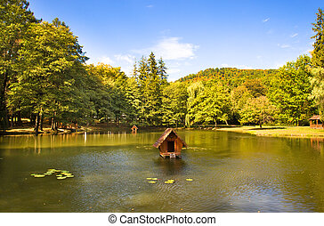Located in the highlands of artificial lake (located in the mountains Korpaty, near the castle of Schoenberg, Ukraine, autumn time of year)
