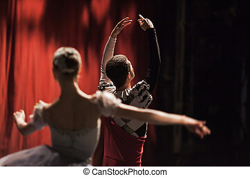 lake., bailarinas, ballet, cisne, movement.