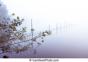 lake bank - a lake bank on a foggy october morning