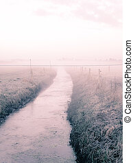 lake bank - a foggy landscape on a november morning