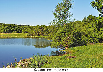 Lake bank - Country landscape with lake and trees, Russia