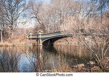 Lake Bow Bridge landscape through the leafless branches of late winter