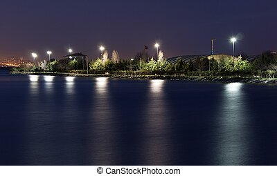 lake by night