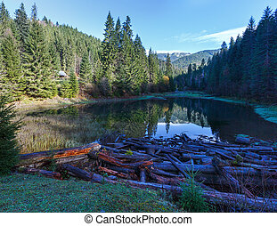 lake., carpathian, 山風景, 秋天