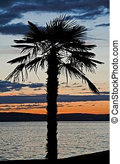 Lake Constance 2