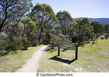 Lake Crackenback Walking Trails