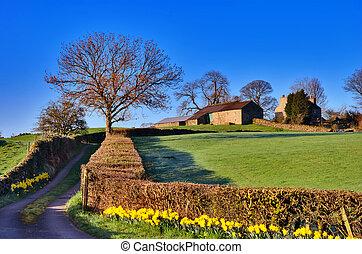 Lake District Farm in Spring.